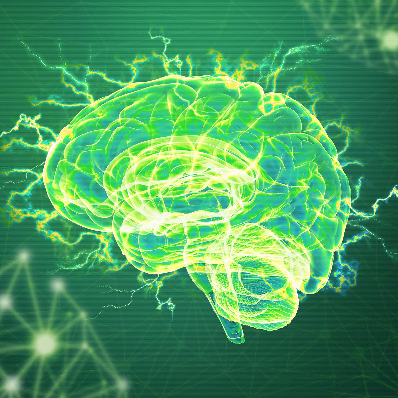 Gespot voor jou, trend 3: Het brein 2.0